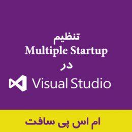 Multiple Startup