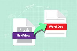 تبدیل اطلاعات gridview به word